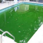 zwembad reinigen